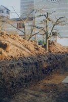 ausgrabungen-1